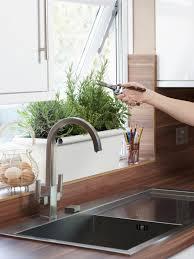 kitchen herb garden cutting plant near window and sink