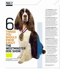 from the classroom what does real world writing look like 6thingswestminsterdogshow