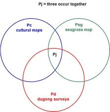 Venn Diagram Intersection Venn Diagram Showing The Joint Intersection Pj When All Three