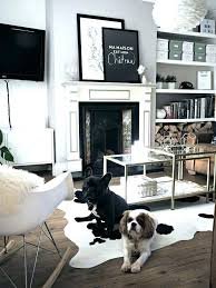 architecture cowhides layered over natural fiber rugs driven decor throughout cowhide rug prepare from brazil in