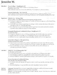 Resume Summary Examples Entry Level Retail Samples Accounting Delectable Resume Summary Examples For Retail