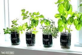 indoor herb garden kit home depot in diy mason jars her
