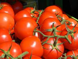 gardening tricks how you can use epsom salt in your garden