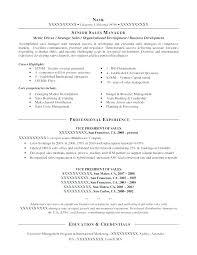 International Resume Sample Real Estate Resume Sample Commercial