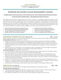 marketing and sales cv executive resume samples