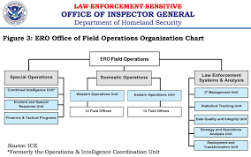 Ice Org Chart 76 All Inclusive Dept Of Homeland Security Org Chart