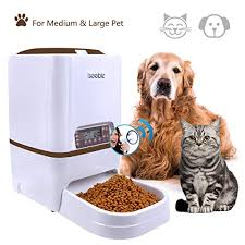 Best Feeders For Dogs In 2019 Top 10 Reviews