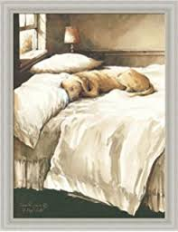 A Dogu0027s Life By John Rossini Golden Retriever Sleeping On Bed 14x18 Framed  Art Print Picture