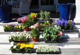 Different Designs Of Flower Pots Kdhamptons Garden Ten Different Design Styles For Pretty