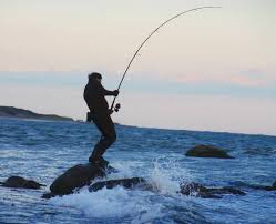 SURF CASTING. Catch your protein. A day at                       the beach can be l00$ worth of fish, easy.