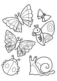 Dessins Insectes Colorier