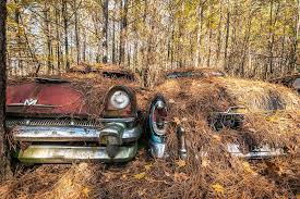 Lovers Under Cover | Walter Arnold Photography | City car, Junkyard cars,  Abandoned cars