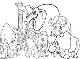 Zoo Animals Coloring Pages For Kindergarten Coloring Pages Of Zoo