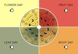 Fruit Day Vs Root Days Wine Tasting By The Lunar Calendar