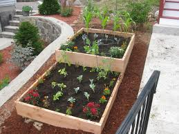 soil mix for diy wood raised bed vegetable garden for small backyard garden spaces ideas