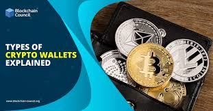 Types of Crypto Wallets Explained | Blockchain Council