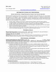 resume perfect information technology professional business analyst resume  and skills