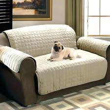 Image Large Room Pet Friendly Couch Covers Medium Size Of Friendly Sofa Cat Dog Couch Cover Pet Blanket For Waterproof Covers Couches Fabric Dog Couch Cover Stockholmguideinfo Pet Friendly Couch Covers Medium Size Of Friendly Sofa Cat Dog Couch