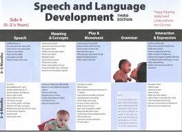 Back To The Basics Speech Milestones