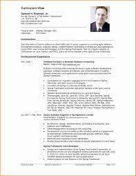 Resume Template Doc Best Of Inspiration Professional Resume Sample