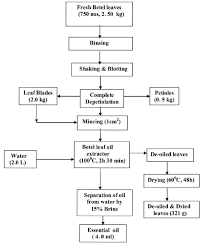 Process And Material Flow Chart For Extraction Of Essential