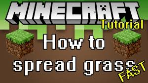 Minecraft Tutorial - How to <b>grow grass</b> and spread it fast - YouTube