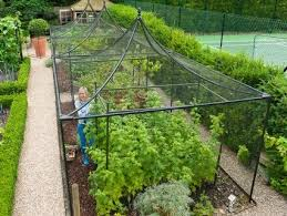 garden cages. Exellent Garden Fruit Cages Cages  In Garden E