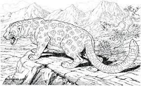 Animal Coloring Pages For Adults Coloring Pages Adults Animals Real