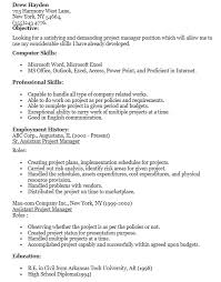 Assistant Project Manager Resume 2