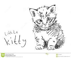 Fresco Disegni Di Cuccioli Di Gatto Da Colorare Migliori Pagine Da