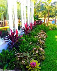 Small Picture stunning way to add tropical colors to your outdoor landscaping