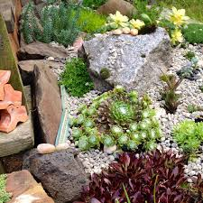 Lawn & Garden:Magical Succulent Rock Garden Idea For Your Backyard Magical Succulent  Rock Garden