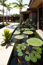 Small Picture Garden Pond Ideas Garden ideas and garden design