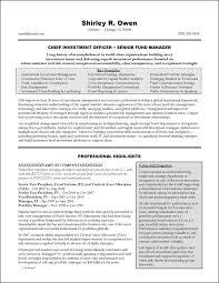 Venture Capital Resume Sample