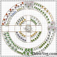 Small Picture Your Herb Garden Layout Planning To Plant Edible Landscape Design