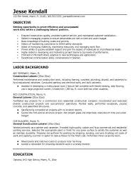 Professional Construction Worker Or Laborer Resume Sample Vinodomia