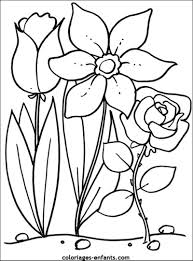 La Nature En Coloriage Fleur Page 2