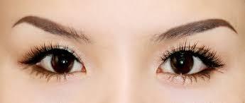 Kết quả hình ảnh cho mắt phượng là mắt như thế nào