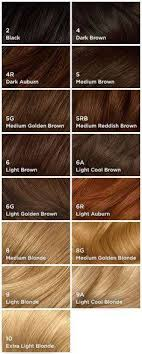 Clairol Hair Dye Color Chart 28 Albums Of Clairol Hair Color Chart Explore Thousands