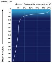 Water Pressure Depth Chart Thermocline Wikipedia