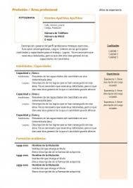 modelo curriculum modelo curriculum vitae combinado mixto
