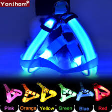 Nylon <b>Pet Dog Harness</b> Cat Safety LED Flashing Light <b>Harness</b> LED ...