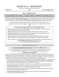 Sales Manager Resume Templates Classy Sales Manager Resume Examples
