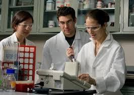 engineering essay biomedical engineering essay