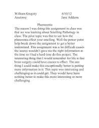 phantosima reflection paper