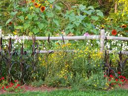 40 Beautiful Garden Fence Ideas Stunning Wildflower Garden Design Gallery