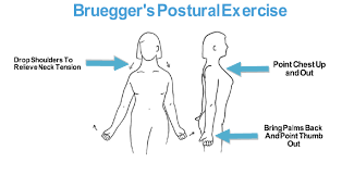 posture exercise while sitting