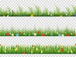 grass transparent background. Grass Flower Vector Pattern: Photostock Green And  Spring Flowers Nature Border Patterns Grass Transparent Background