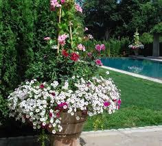 Container Vegetable Gardening Ideas Uk  Home Outdoor DecorationContainer Garden Ideas Uk