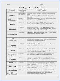 Cell Organelles Structure Function Chart Organelle Worksheet Worksheet Fun And Printable